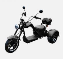 Электроскутер SkyBoard Trike Chopper  2000W 60V20Ah
